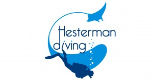 logo Hesdiving