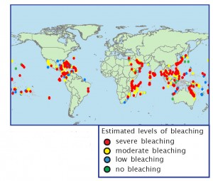 Major bleaching areas recorded for all years