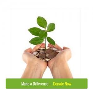 donate2