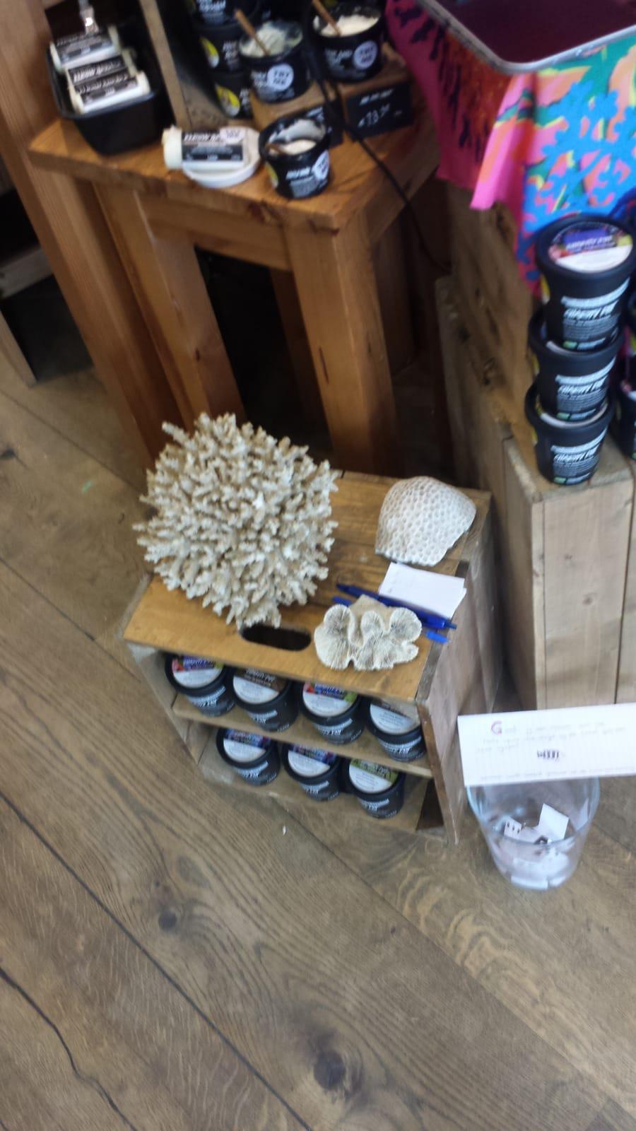Koraal in de Lush winkel in Den Bosch