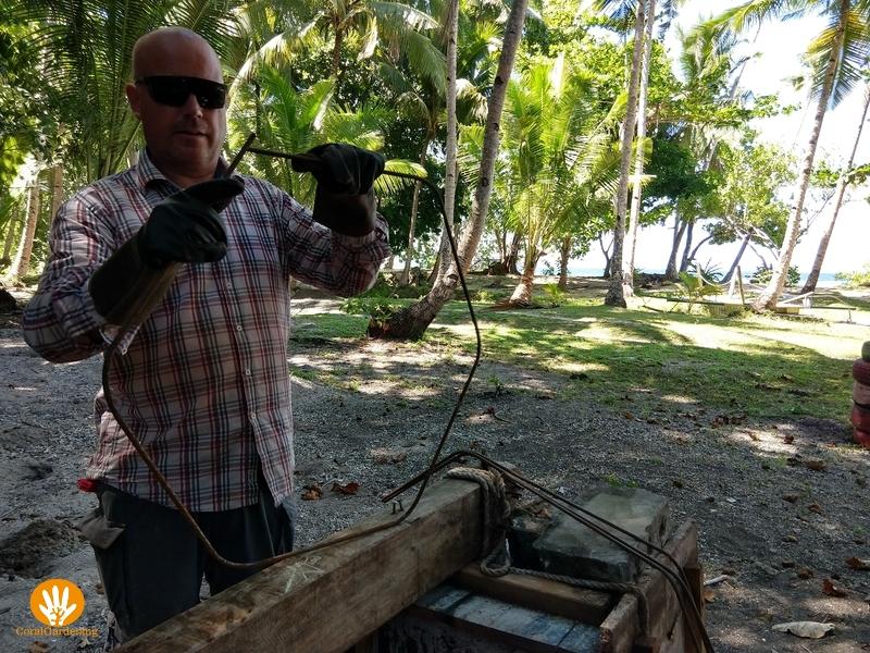 Frank maakt een spider-frame maken om het dode koraal bij elkaar te houden.