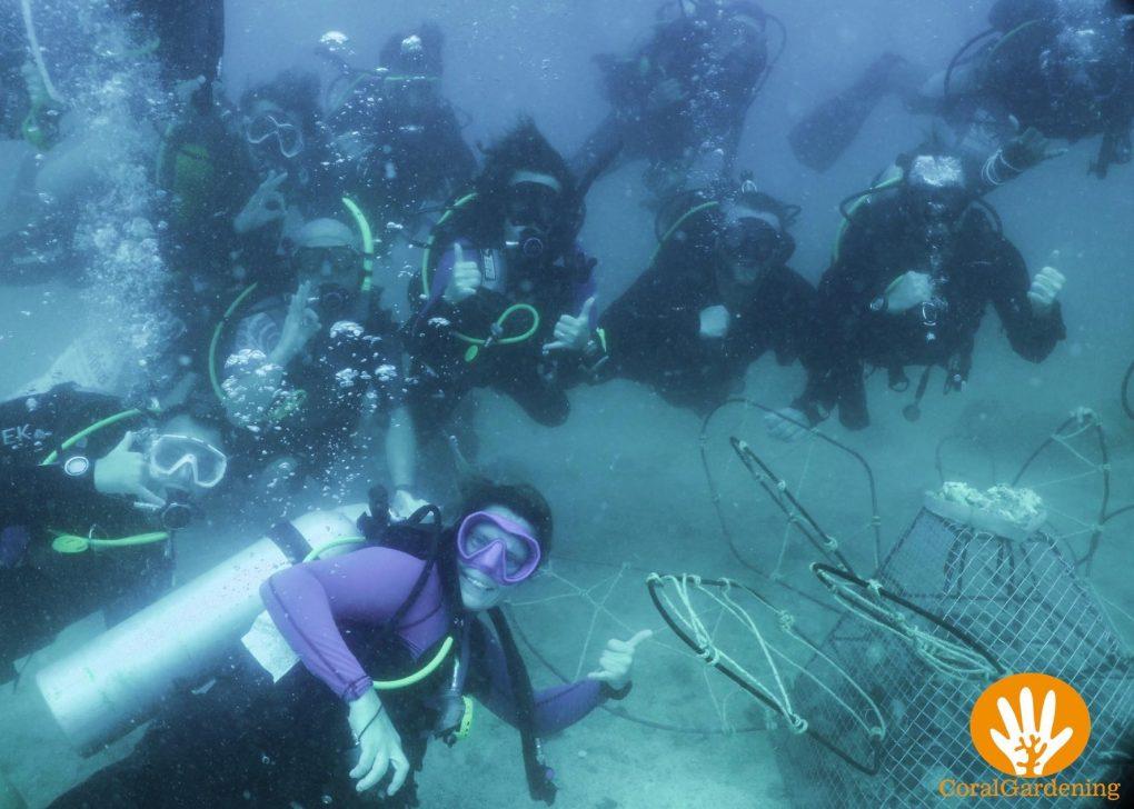 Het plaatsen van een structuur onder water is een hele unieke ervaring.