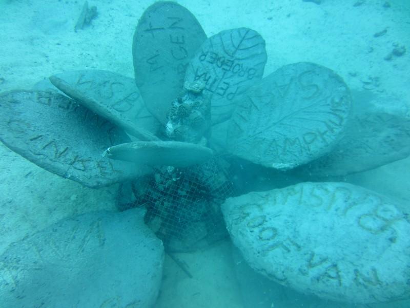 Daar staat de tweede bloem van de CoralGarden Hin Wong Bay.