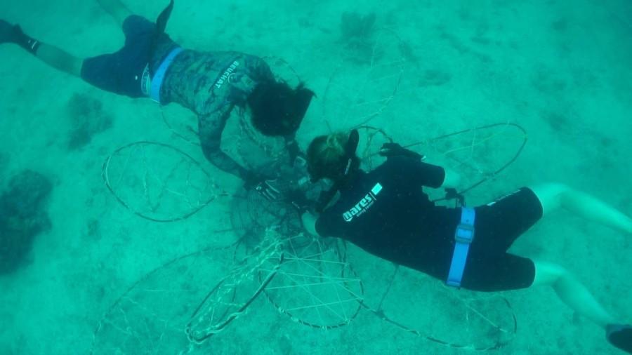 Freedive team monteert een blad in de bloem.