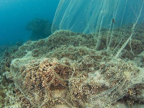 akule-nets-coral-reef-2